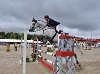 The Ugoria Insurance Company will sponsor the International Horse Show Jumping Tournament
