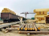 Sverdlovsk Oblast Authorities Looking For Investor To Revive Timber Industry